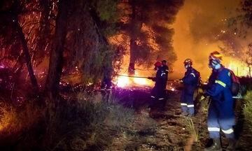 Κόρινθος: Μαίνεται η φωτιά στο Σχίνο Λουτρακίου - Εκκενώθηκαν δύο χωριά, ζημιές σε σπίτια