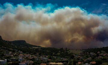 Φωτιά στoν Σχίνο: Εκκενώνονται οικισμοί κοντά στα Μέγαρα – Νέο μήνυμα από το 112 (vids)