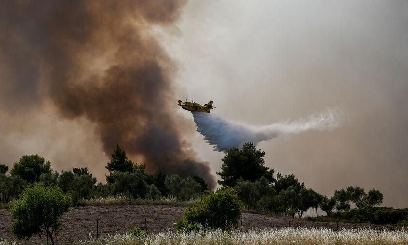 Γεράνεια Όρη: Εικόνα ύφεσης παρουσιάζει η πυρκαγιά σύμφωνα με τον αρχηγό της Πυροσβεστικής
