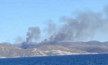 Φωτιά ξέσπασε στην Κέα (pics, vid)