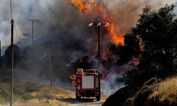 Πυρκαγιά στην Κερατέα - Κοντά σε σπίτια