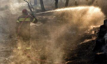 Αίγινα: Φωτιά στα Βροχεία - Μεταβαίνουν ακτοπλοϊκώς από τον Πειραιά ενισχύσεις