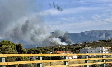 Πυρκαγιά στην Πυλαία - Εντολή για εκκένωση οικισμών