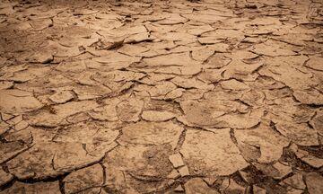 Συρία: Η ξηρασία θα επιδεινώσει την επισιτιστική κρίση προειδοποιεί ο ΟΗΕ