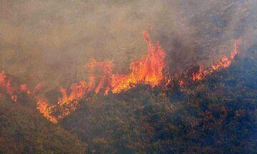 Βραυρώνα Αττικής: Φωτιά σε δασική έκταση (pic)
