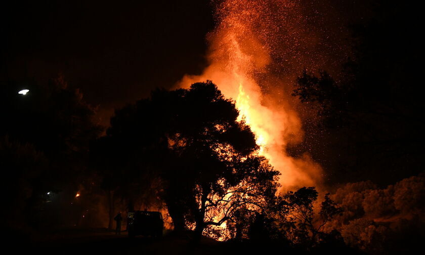 Κεφαλονιά: Σε εξέλιξη η φωτιά, εκκενώθηκαν Αγία Ειρήνη, Καπανδρίτι, οι φλόγες στις αυλές των σπιτιών