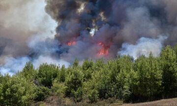 Ριτσώνα: Μάχη Πυροσβεστών με τις φλόγες - Εισήγηση για εκκένωση σπιτιών στα Μέθανα