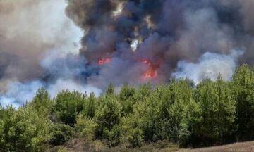Πυρκαγιά ξέσπασε στην Πάρνηθα λόγω κεραυνών