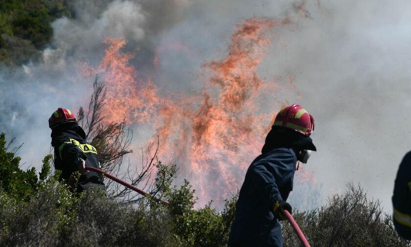 Κεφαλονιά: 6.000 στρέμματα κάηκαν, σύμφωνα με εικόνες ευρωπαϊκού περιβαλλοντικού δορυφόρου (pic)