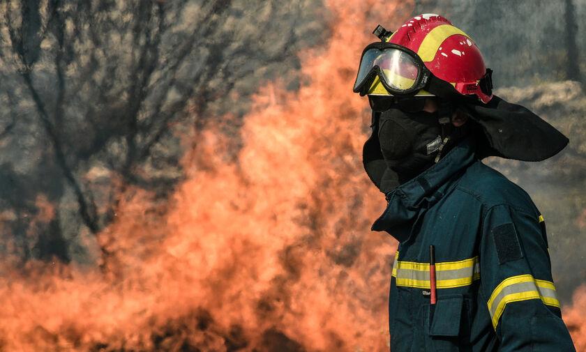 Πυρκαγιά σε δασική έκταση στη Χασιά