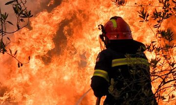 Ελευσίνα: Πυρκαγιά στο Πάτημα