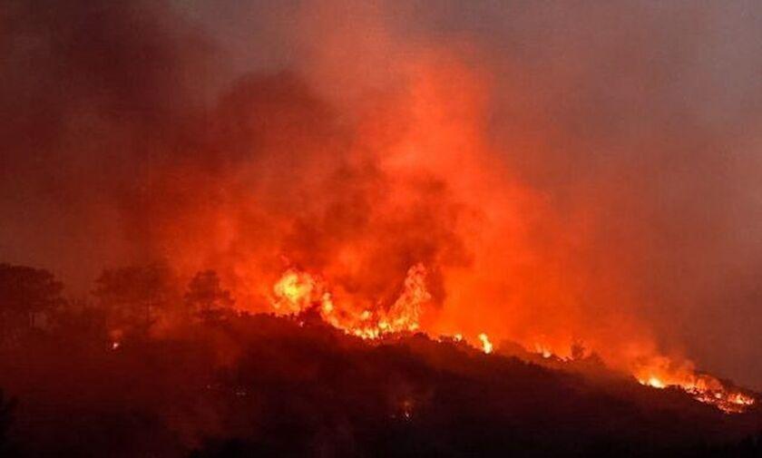 Σε εξέλιξη η μεγάλη φωτιά που έχει εκδηλωθεί στο νησί της Σάμου - Μεγάλη ενίσχυση από αέρος