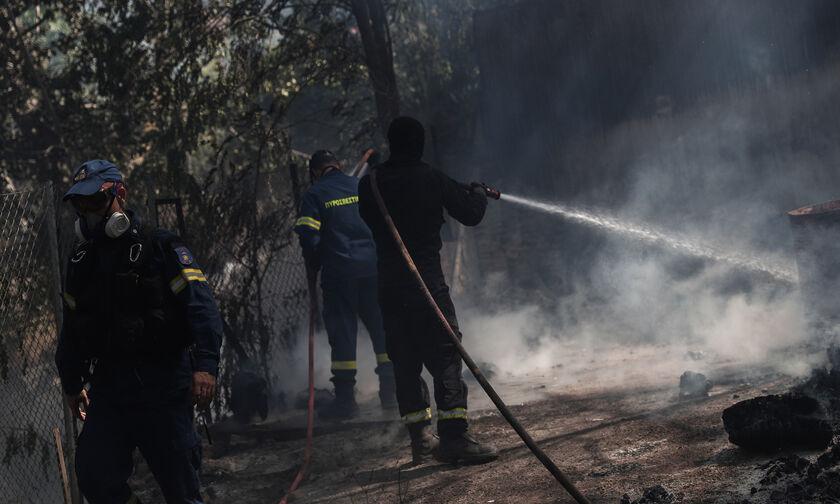 Πυρκαγιά στη Σταμάτα: Σε σύλληψη μετατράπηκε η προσαγωγή 64χρονου μελισσοκόμου