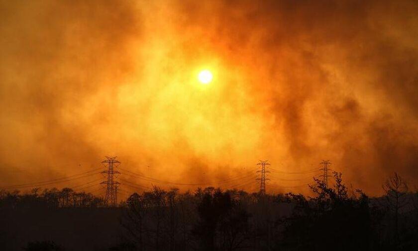 Τουρκία: Τέσσερις νεκροί και εκτεταμένες καταστροφές εξαιτίας των δασικών πυρκαγιών