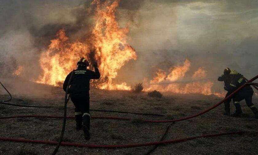 Αχαΐα: Μεγάλη φωτιά - Κλειστή η Ολυμπία οδός και η παλαιά εθνική, εκκενώνεται η Ζήρια
