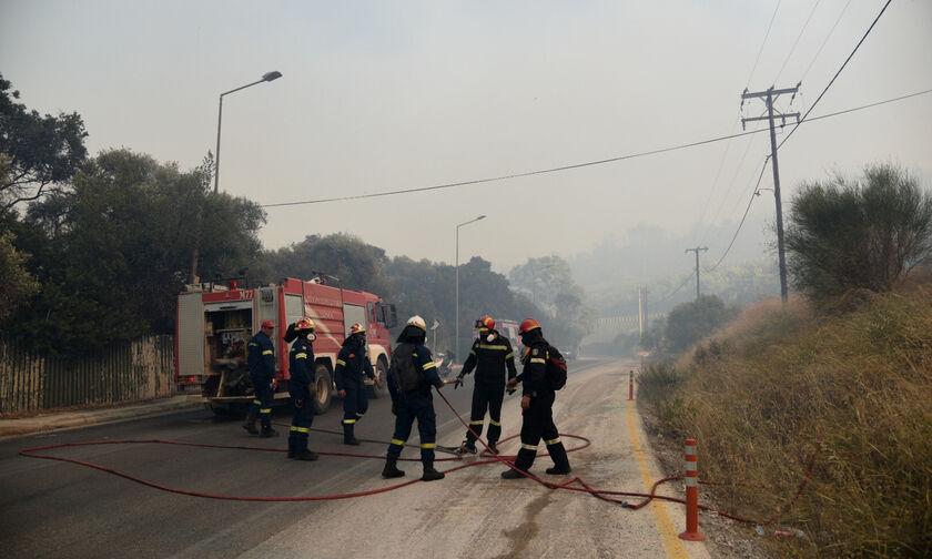 Φωτιά στην Αχαΐα: Εκκενώθηκαν κατασκήνωση και ξενοδοχείο – Απομακρύνθηκε κόσμος από παραλίες (vids)