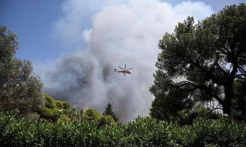 Βαρυμπόμπη: Ανακοινώνονται μέτρα στήριξης των πυρόπληκτων