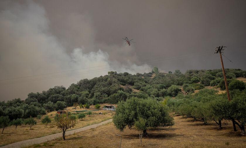 Εύβοια: Εκκενώνεται το χωριό Κεχριές εξαιτίας της πυρκαγιάς