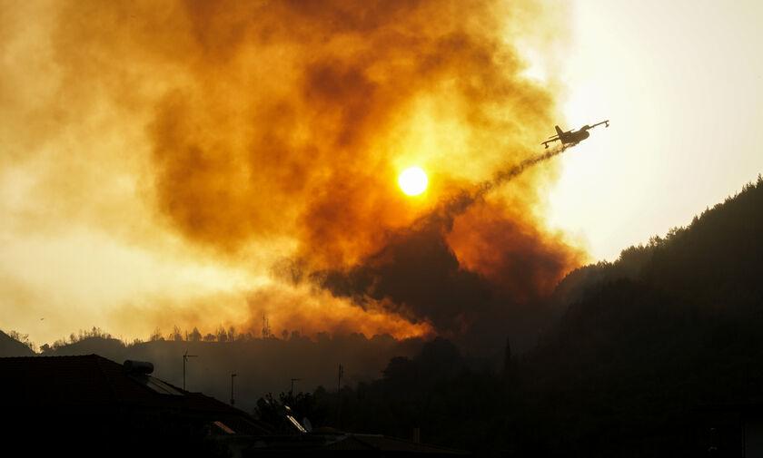 Πυρκαγιές στην Εύβοια και την αρχαία Ολυμπία: Έρχεται βοήθεια από Σουηδία και Γαλλία