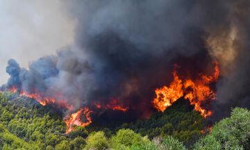 Πολύ υψηλός κίνδυνος πυρκαγιάς σε περιοχές της Μακεδονίας και της Θράκης