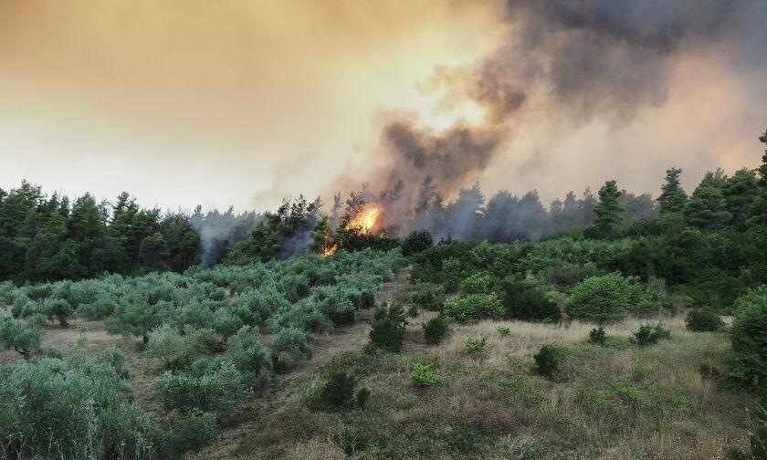 Βόρεια Εύβοια: Τρία τα μέτωπα της πυρκαγιάς - «Τιτάνια» η μάχη των πυροσβεστών