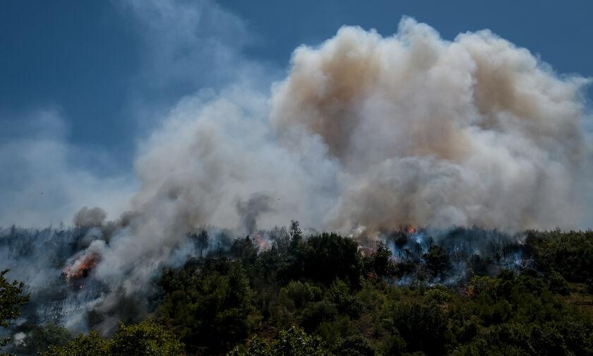 Δυτική Μακεδονία: Απαγόρευση κυκλοφορίας πεζών και οχημάτων σε δάση και δασικές εκτάσεις