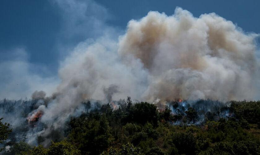 Αναζωπύρωση της πυρκαγιάς στην Κοζάνη