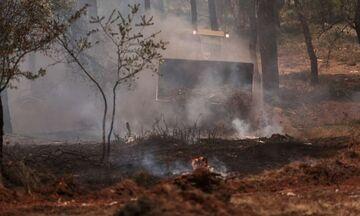 Φωτιές: Μεταφέρονται οι μετανάστες της δομής στη Μαλακάσα
