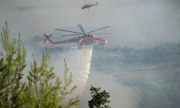 Ηλεία: Επιχειρούν τρία εναέρια πυροσβεστικά μέσα - Σε εξέλιξη η πυρκαγιά στην Ανατολική Μάνη