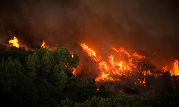 Πυρκαγιές: Αναφορά στον εισαγγελέα για εμπρησμό εκ προθέσεως