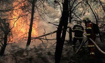 Πύρινος εφιάλτης στη Γορτυνία - Αναζωπυρώσεις στην Εύβοια - Πάνω από 900.000 στρέμματα η καταστροφή