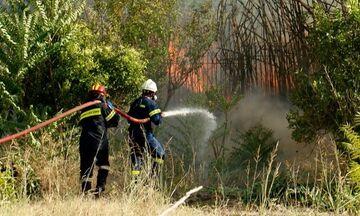 Ανατολική Μάνη: Σε τρία σημεία υπάρχουν ακόμα εστίες φωτιάς
