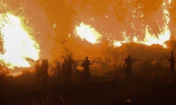 Συνεχίζουν να επιχειρούν οι πυροσβεστικές δυνάμεις σε Γορτυνία και Ανατολική Μάνη