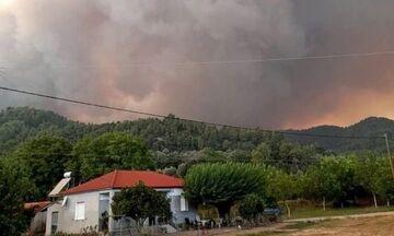 Φωτιά στη Γορτυνία: Αποχαιρέτησαν με ... συρτάκι τους Γάλλους πυροσβέστες (vid)