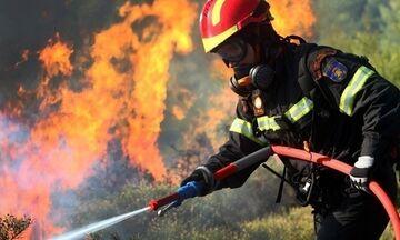 Συνεχίζονται οι πυροσβεστικές επιχειρήσεις σε Γορτυνία, Αρχαία Ολυμπία και Ανατολική Μάνη