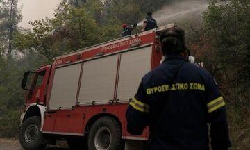 Φωτιά στα Μεσοχώρια Ευβοίας, εκκενώνονται χωριά