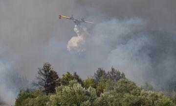 Πυρκαγιές: Ισχυρές δυνάμεις επιχειρούν σε Γορτυνία, Μάνη και Αρχαία Ολυμπία