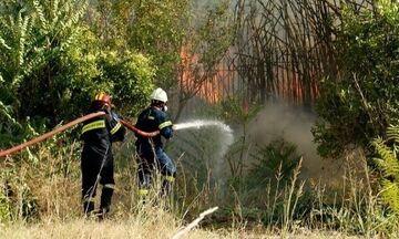 Πυρκαγιά και στα Βίλια Αττικής