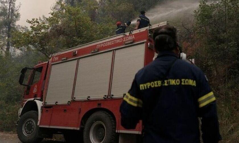 Φωτιά στο Παγγαίο όρος - Δεν απειλούνται σπίτια (pic)
