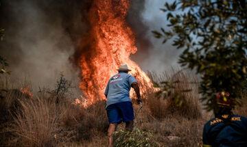 Βίλια: Στα 500 μέτρα από τα σπίτια οι φλόγες