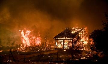 Βίλια: Μάχη να μείνουν οι φλόγες εκτός οικισμού (vids)