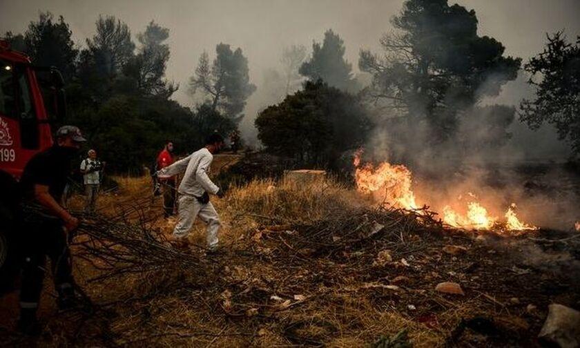 Συναγερμός στα Βίλια: Νέα φωτιά στην περιοχή Κάζα (vid)