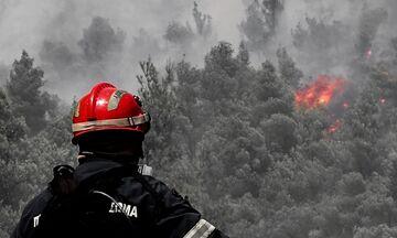 Βίλια - Πυρκαγιά: Πού έχουμε διακοπή κυκλοφορίας