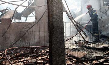 Βίλια - Πυρκαγιά: Κάηκαν σπίτια - Οι εικόνες της καταστροφής (pics)