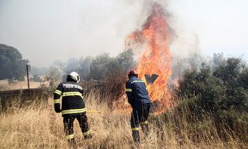Βίλια: Σε ύφεση η πυρκαγιά στην Κάζα