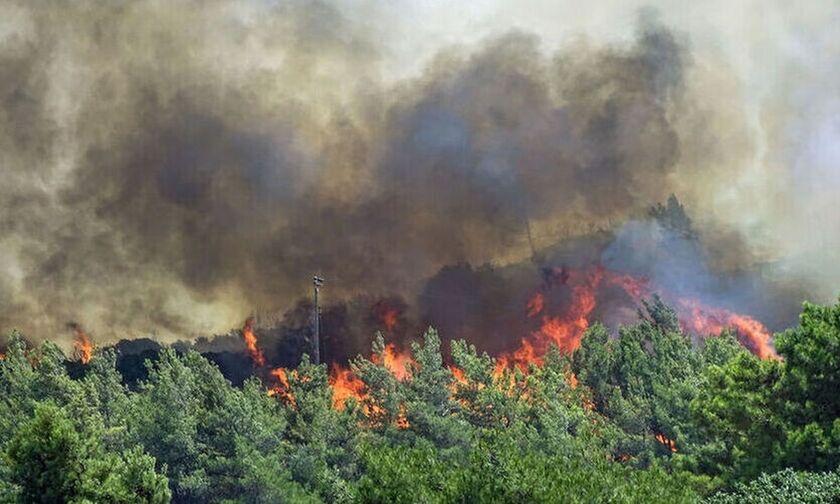 Φωτιές στην Ελλάδα: Εγκρίθηκαν τα μέτρα στήριξης