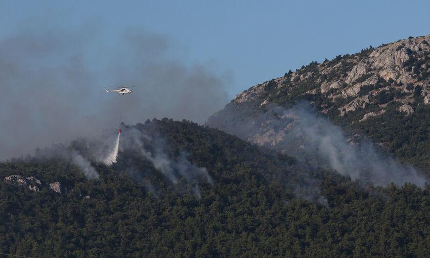 Πάρνηθα: Φωτιά στην περιοχή Μπόσκιζα του δήμου Αχαρνών