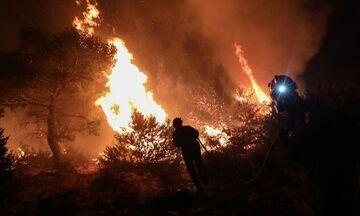 Φωτιά στη Νέα Μάκρη: Καλύτερη εικόνα - Σε γενική επιφυλακή η Πυροσβεστική στην Αττική