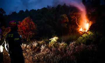 Φωτιά ξέσπασε στην Κάρυστο