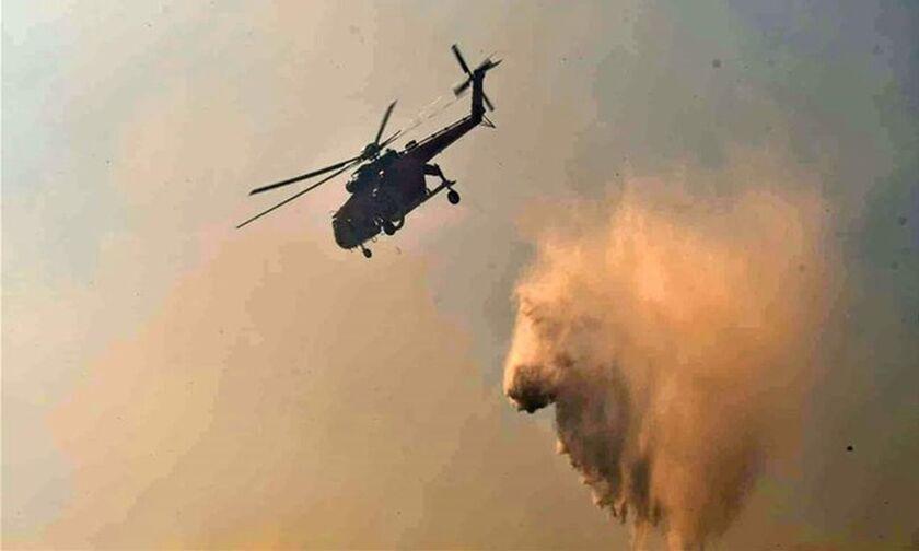 Ηλεία: Πυρκαγιά σε εξέλιξη στα Άγναντα, δεν απειλούνται σπίτια